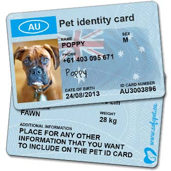 Pet Wallet ID Cards