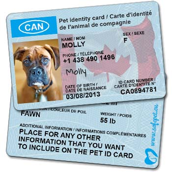 SafePet Personalized Wallet ID Card for dog and cat owners