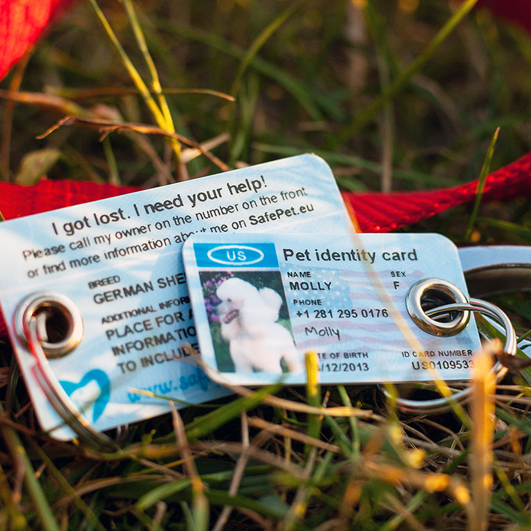 SafePet Personalized Pet ID Tag for dogs and cats