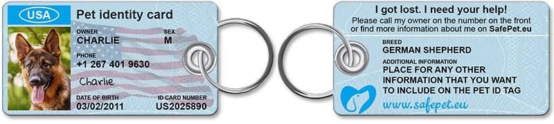 Standard Pet ID Tag - front and back view